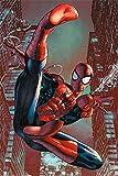 empireposter 749161-Web Sling-Dessin Animé Spiderman Comic Poster, Papier, Multicolore, Taille 61x 91,5cm 91,5x 61x 0,14cm