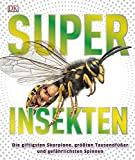 Superinsekten: Die giftigsten Skorpione