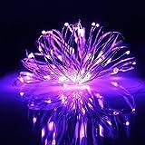 20er LED Micro Lichterkette Funziona a batteria mini luci interno filo per feste Natale gresonic Lila