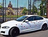 Auswahlangebot! Magnetfolie Herz Hochzeitsschmuck Rot - Weiß (Weiß Matt) Magnet Herz