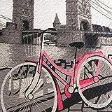 Eurofirany Bettüberwurf Steppdecke 170x210 rosa grau Tagesdecke USA 2 Fahrrad Bridge Druck
