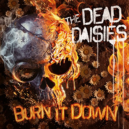 Burn It Down [Explicit]