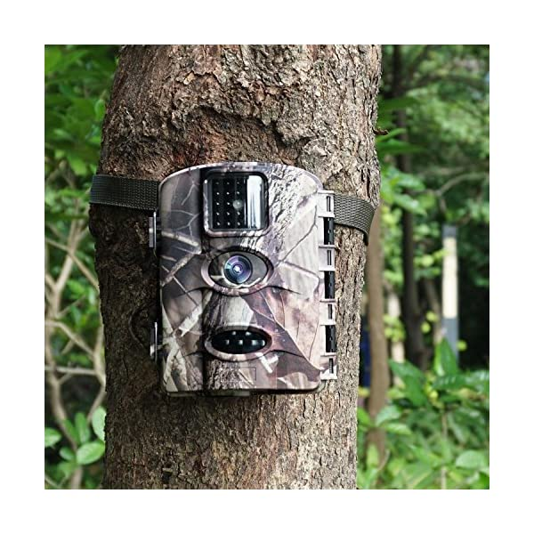 ARTITAN Wildlife Camera No Glow 12MP Trail Game Camera 65ft Infrared Night Vision Motion Activated Hunting Cam Time Lapse IP65 Waterproof Nature Garden Home Security Camping