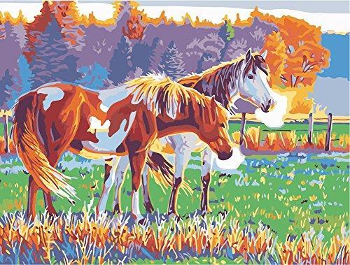 Fuumuui DIY Vorgedruckt Leinwand-Ölgemälde Geschenk für Erwachsene Kinder Malen Nach Zahlen Kits Home Haus Dekor -Braunes und weißes Pferd 40*50 cm