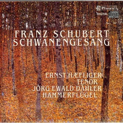 Schwanengesang, Op. Posth., D. 957: XIII. Der Doppelgänger