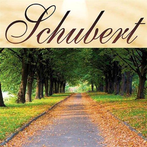 Ave Maria D.389 - Schubert