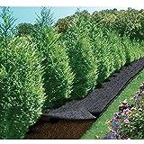 Feutre de jardin Cap Vert - Longueur 5 m - Largeur 0,9 m