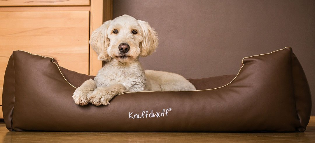 Knuffelwuff Ray Leather-Velour Dog Bed Medium/Large 85 x 63 cm B00ZV070UW