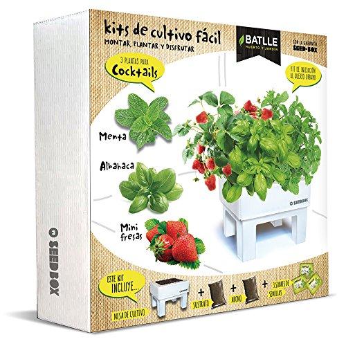 Huerto Urbano - Seed Box Cocktails - Batlle