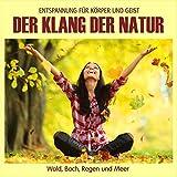 Der Klang der Natur - Wald Bach Regen und Meer (ohne Musik) Naturklänge für Körper und Geist - Entspannung und Wellness für die Seele