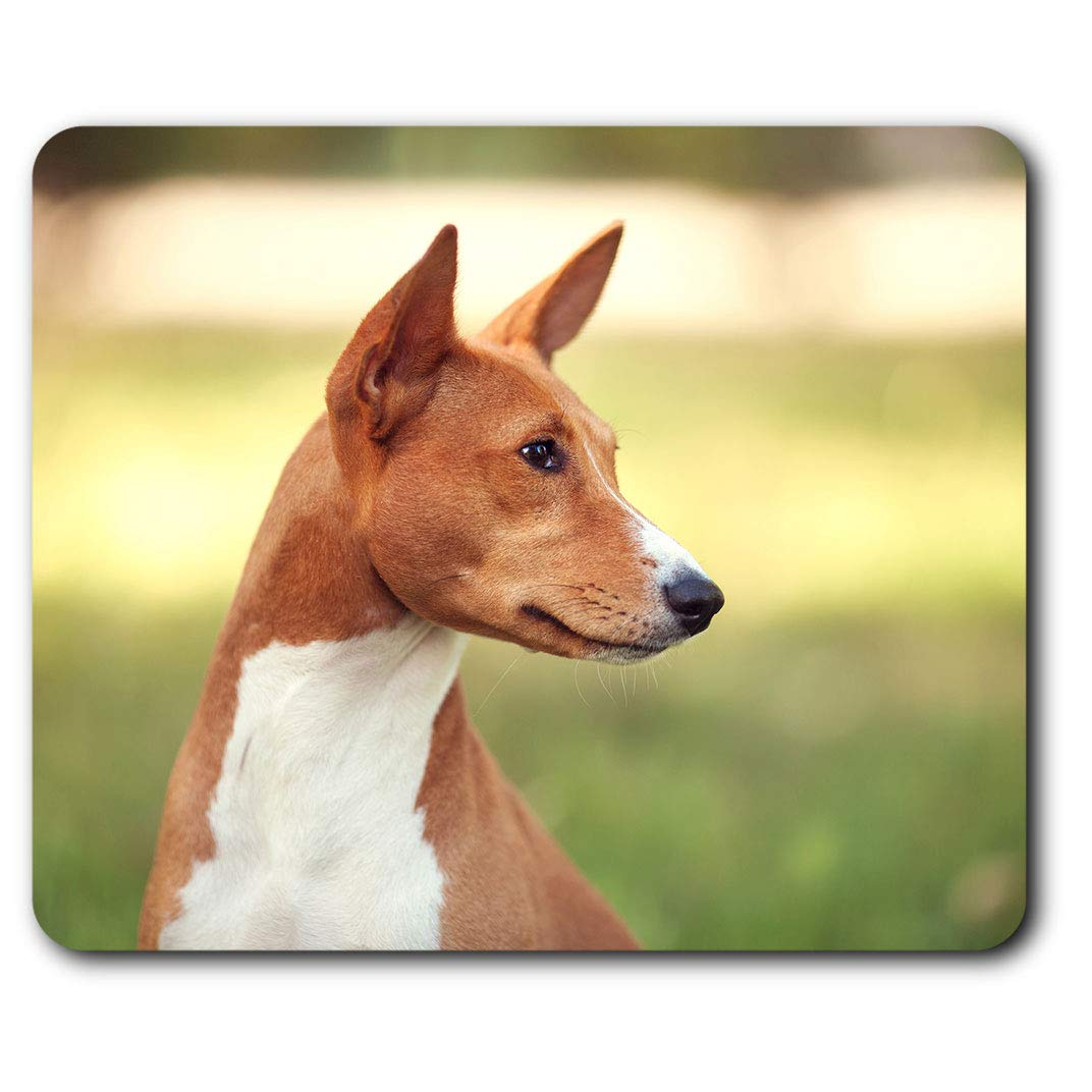 Comfortable Mouse Mat – Brown Basenji Dog Puppy 23.5 x 19.6 cm (9.3 x 7.7 inches) for Computer & Laptop, Office, Gift, Non-slip Base – RM12378