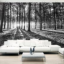 Fototapete schwarz weiß wald  Suchergebnis auf Amazon.de für: wald tapete schwarz weiß