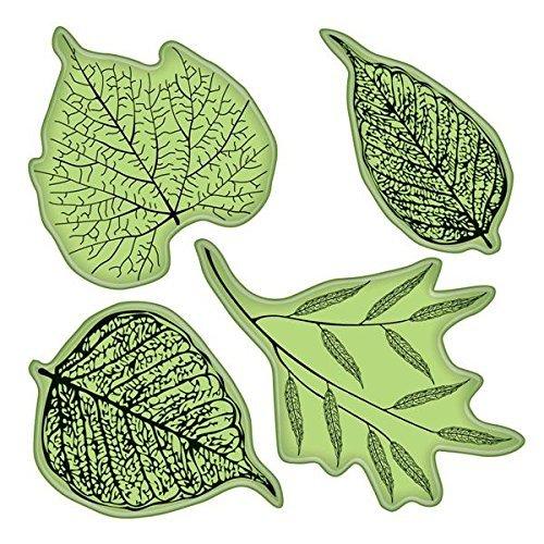 Inkadinkado Stempel, gewundene Reben Fossil Leaves (Blätter Stempel)