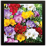 PPD Framed Floral Wall Paintings For Living Room And Bedroom With Frame Size 12 Inch X 12 Inch With Special Effect Textured (10)