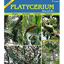 Platycerium (Fernmania Book 1) (English Edition)