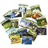 10 x Puzzle / Rahmenpuzzle als Set - buntes Tier Motiv - ideal als Beschäftigungsspielzeug / kleines Geschenk / Mitgebsel für Kindergeburtstag oder Motto Party - tolles Partyzubehör zum Auffüllen der Mitgebsel Tüte für Kinder