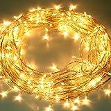 Liqoo® 230V 10m Strisce LED Bianco caldo per Natale, Festa, Luci della Stringa, Lampada Strisce per la decorazione interna ed esterna