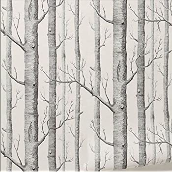 Rustique Moderne Foret Bouleaux Rouleau De Papier Peint Noir Blanc