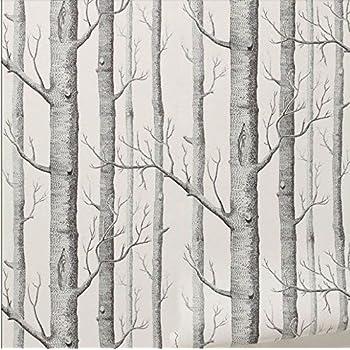 Rustique Moderne Forêt Bouleaux Rouleau De Papier Peint Noir