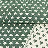 Gobelinstoff Sterne 2-seitig verwendbar grün Canvasstoff