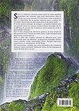 Image de Guide du bien-être selon la médecine chinoise : Etre bien dans son élément