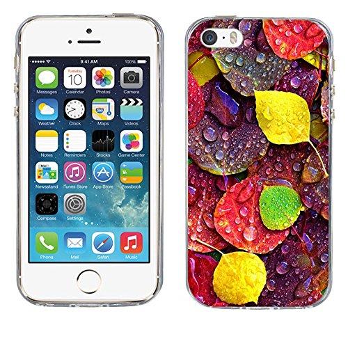 Custodia Apple iPhone 5 5S 5SE, Fubaoda iPhone 5 5S 5SE Bumper Case, Immagine vivida [super luna] Morbida Flessibile Estremamente TPU Gel Sottile Pelle Trasparente Antigraffio Protezione Cover per App pic: 14