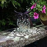 Smart Garden Metal Scroll Owl Solar Light - Smart Garden - amazon.co.uk