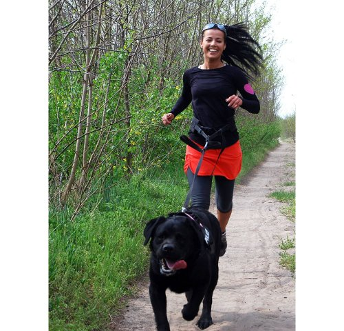 Julius-K9  110JO/2  Jogginggurt mit Gummileine, Stärke: 2, für Hunde über 25 Kg -