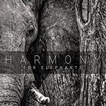 Harmony for Elephants