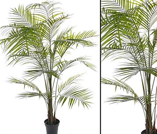 Künstliche Arekapalme mit UV sichere Textilblätter, Höhe 225cm- Kunstpflanze Kunstbaum künstliche Palmen Kunstpalmen Dekopalmen Palmen Palmbäume </p> -> großes Kunstpflanzen und Kunstpalmen Sortiment