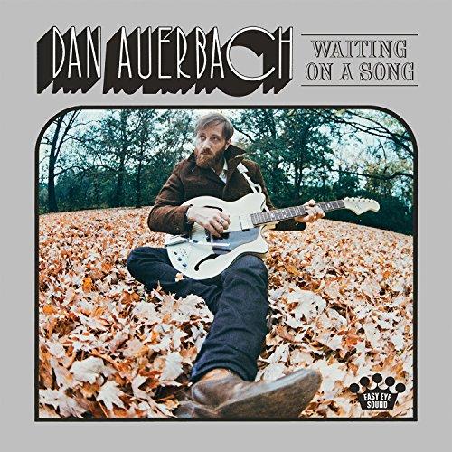 Waiting on a Song [Vinyl LP] - Hid-kopf