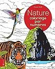 Nature - Coloriage par Numeros