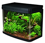 Interpet Insight Glas-Aquarium, komplettes Starter-Set Premium
