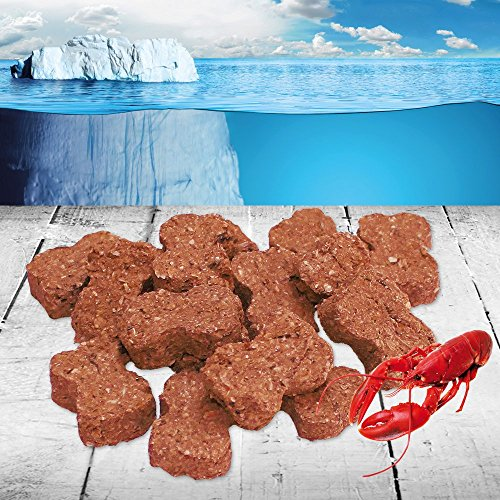hummer-snack-100g-snackfish-sind-reine-naturprodukte-die-ausschlielich-aus-frisch-gefangenem-islndis