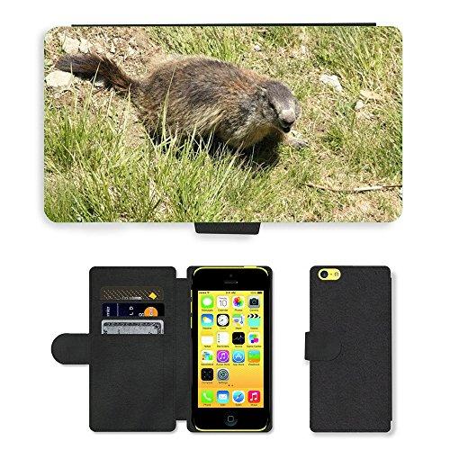 Just Mobile pour Hot Style Téléphone portable étui portefeuille en cuir PU avec fente pour carte//m00138478Marmot Animal Créature//Apple iPhone 5C