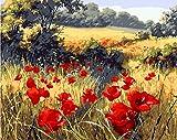 YEESAM Art Peinture par numéro Kits pour adultes enfants–Coquelicot Rouge Flower Garden Toile en lin 40,6x 50,8cm