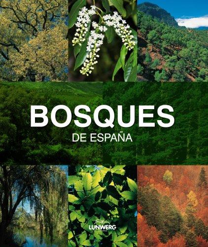 Bosques de España. Lunwerg Medium