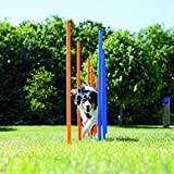 Bild: Trixie 3206 Dog Activity Agility Slalom 115   3 cm blauorange
