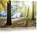 Sonnenstrahlen im Wald Format: 80x60 cm auf Leinwand, XXL riesige Bilder fertig gerahmt mit Keilrahmen, Kunstdruck auf Wandbild mit Rahmen, günstiger als Gemälde oder Ölbild, kein Poster oder Plakat