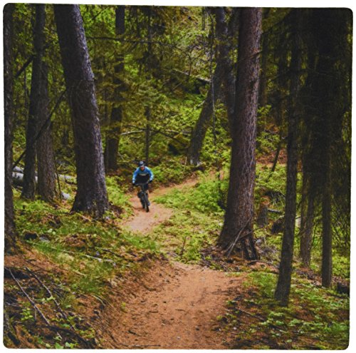3drose-mountain-biking-whitefish-trail-montana-usa-us27-cha2882-chuck-haney-mouse-pad-mp-144918-1