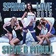 Spring Love 2013 (Radio Mix) [feat. Pitbull]