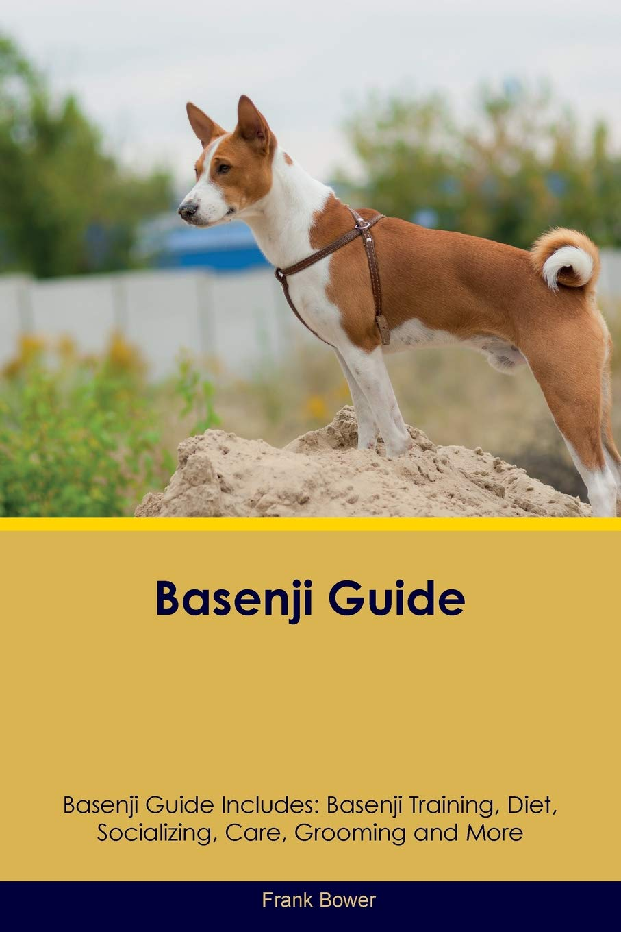 Basenji Guide Basenji Guide Includes: Basenji Training, Diet, Socializing, Care, Grooming, Breeding and More