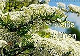 weiße Blüten (Wandkalender 2015 DIN A3 quer): Die Natur bezaubert auch mit wenig Farbe. (Monatskalender, 14 Seiten)
