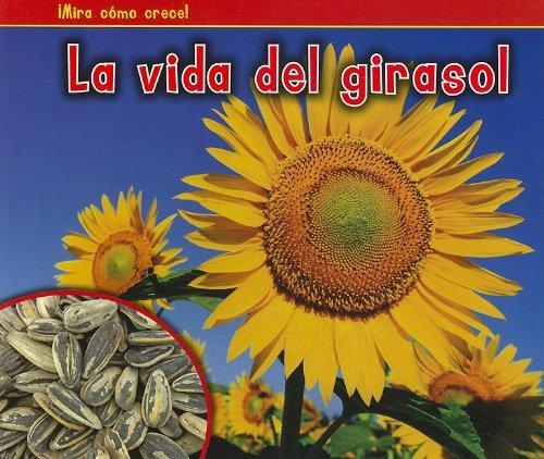 La Vida del Girasol = The Life of a Sunflower (Bellota: Mira como crece! / Acorn: Watch It Grow!)