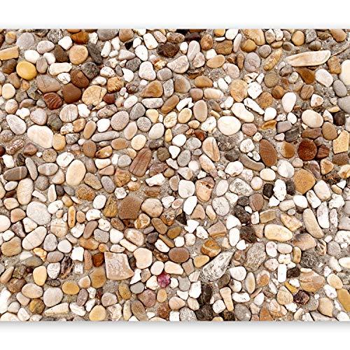 murando - Fototapete 100x70 cm - Vlies Tapete - Moderne Wanddeko - Design Tapete - Wandtapete - Wand Dekoration - Strand Steine Stein Textur Kieselsteine Textur Kieselsteine f-B-0024-a-c