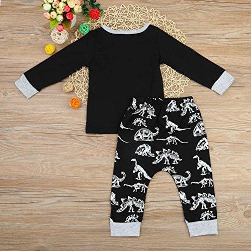 Saingace Bébé Garçons Filles Dinosaure Impression Tops Un pantalon Outfits Vêtements (Label Size:100(18-24mois))
