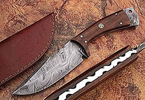 HANDMADE DAMASCUS STEEL AWESOME STYLE 25CM BEAUTIFUL KNIFE WITH COCOBOLO
