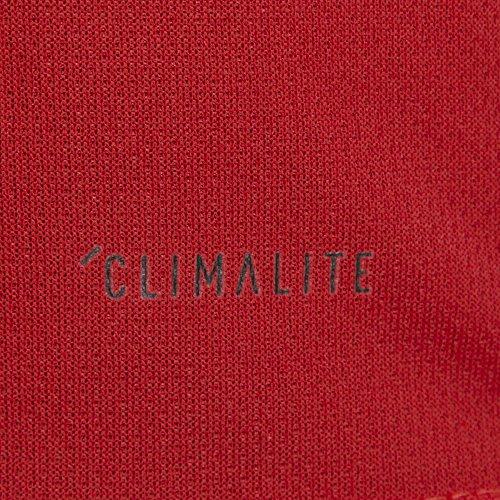 adidas Federation Belgian Tights  Men  Men  BQ4520  Red  intense red   XL