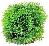 Taiyo Pluss Discovery Ball Plant Small, 3.81 cm x 3.81 cm