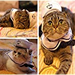 Doggie Style Store White Cat Kitten Pet Sailor Hat Scarf Costume 61l567ZbhOL